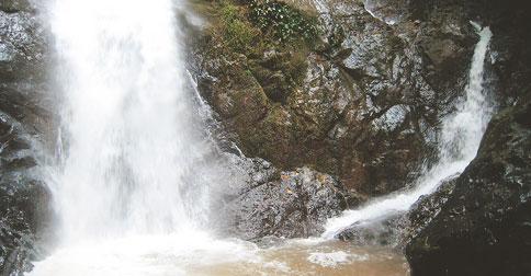 multiple-streams
