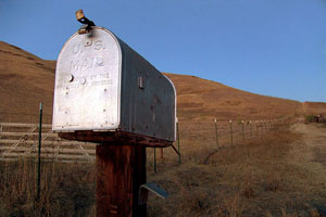 rural-mail-box