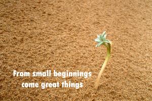 small-beginnings