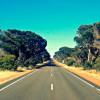 road-trip-1